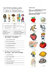 English Worksheet: Verb To Be and Indefinite Articles