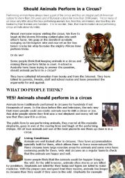 English Worksheet: should animals perform in a circus