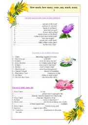 English Worksheets: Much, many, how much, how many, aby, some