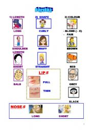 English Worksheets: A PICTIONARY ABOUT FACES AND HAIR DESCRIPTIONS