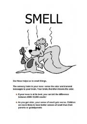 English Worksheets: The sense of smell