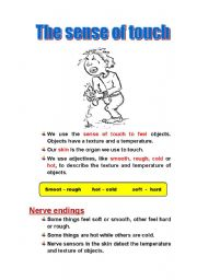 English Worksheets: The sense of touch
