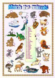English Worksheets: Animals - matching exercise 2/2  (fully editable + key)