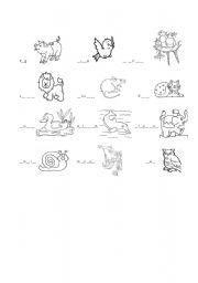 English Worksheets: animals exercise