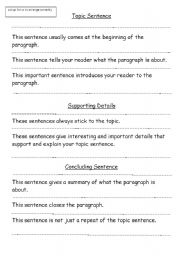 English Worksheets: The Paragraph Burger