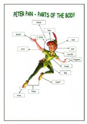 peter pan - parts of the body poster