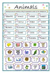 English Worksheets: ANIMALS, match up