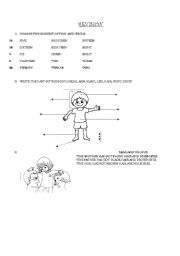 English Worksheets: REVISION, NUMBERS, PART OF THE BODY, COLOURS