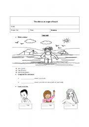 English Worksheets: The skin