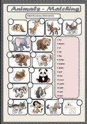 English Worksheets: ANIMALS -MATCHING
