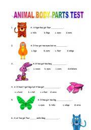 English Worksheets: Animal Body Parts Test