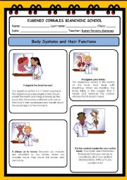 English Worksheets: Body Systems
