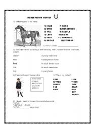 English Worksheet: Horse Riding