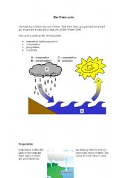 English Worksheet: The water cycle. Description, activities and great song with lyrics