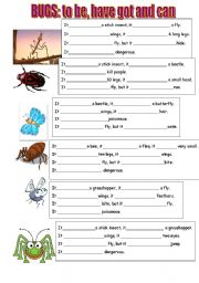 English Worksheet: BUGS: TO BE, HAVE GOT AND CAN