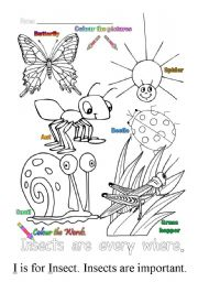 English Worksheets: I is for insect