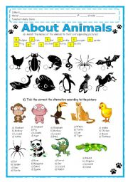English Worksheets: About Animals