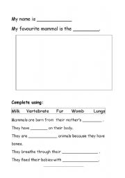 Printables Mammal Worksheets english teaching worksheets mammals my favourite mammal