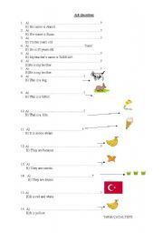 English Worksheets: ask question