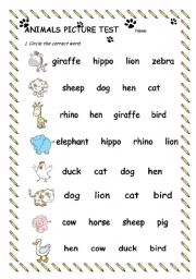 English Worksheets: Animals Picture Test