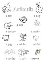 English Worksheets: Animals pictionary + exercise