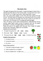 English Worksheets: The Apple Tree