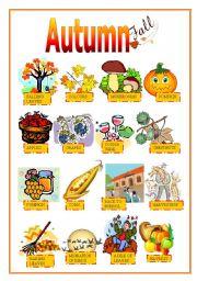 English Worksheets: AUTUMN