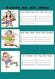 English Worksheet: PARTS OF MY BODY