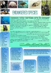 English Worksheet: Endangered species - the sea turtle - fill-in exercise