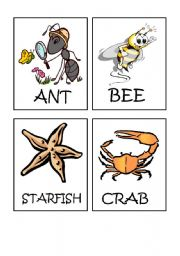 English Worksheet: Animals flash-cards part 4