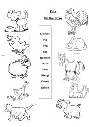 English Worksheets: Pets