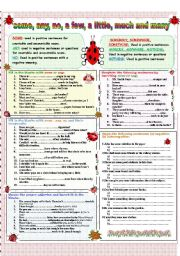 English Worksheet: Some, any, no, a few, a little, much, many