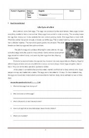 English Worksheets: Reading comprehension, grammar and vocabulary test