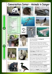 English Worksheet: Conversation Corner: Animals in Danger