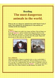 English Worksheets: The most dangerous animals in the world