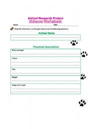 english worksheets animal research project worksheet. Black Bedroom Furniture Sets. Home Design Ideas
