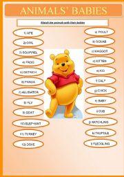 English Worksheet: Animals� Babies