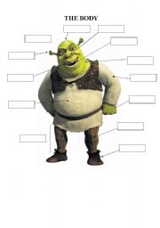 English Worksheet: THE BODY - SHREK