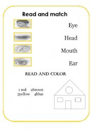 English Worksheets: face and colours worksheet
