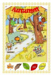 English Worksheet: Autumn