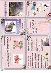 English Worksheet: The fairy, the cat and the rose . Another minibook!