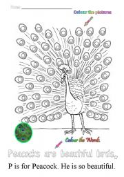 English Worksheets: P is for peacock