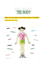 English Worksheets: the body