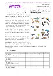 Vertebrates And Invertebrates Worksheets Grade 6 … | Pinteres…