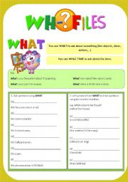 English Worksheets: Wh- Files