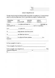 Printables Animal Adaptations Worksheets animal adaptations for kids worksheets davezan davezan