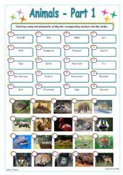English Worksheets: Animals - Part 1
