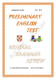 English Worksheets: PET grammar review
