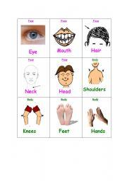English Worksheets: Flash cards