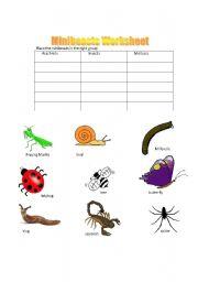 English Worksheets: Minibeasts Grouping
